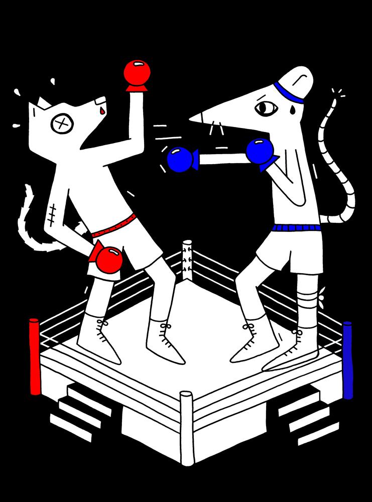 boksers01