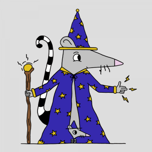 wizard-rat